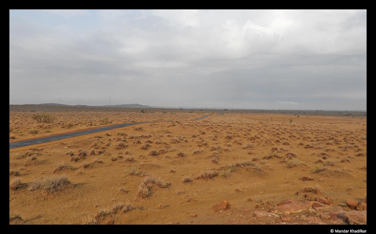 DNP Landscape