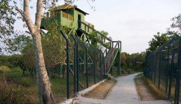 Watch-Towers-of-Sundarban